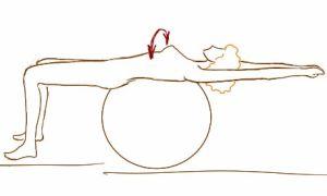 Комплекс упражнений для позвоночника